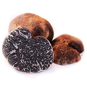 truffe-appalache